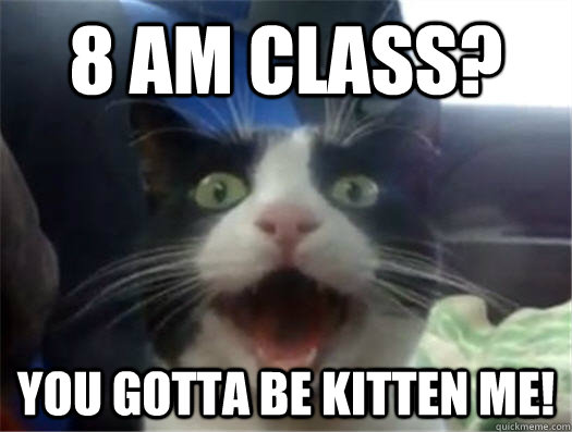 8 AM class? You gotta be kitten me!
