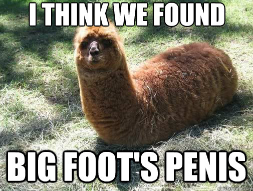 i think we found Big Foot's penis - i think we found Big Foot's penis  Alpacapillar