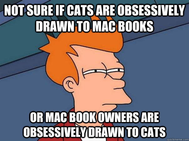 Not sure if cats are obsessively drawn to mac books or mac book owners are obsessively drawn to cats - Not sure if cats are obsessively drawn to mac books or mac book owners are obsessively drawn to cats  Futurama Fry