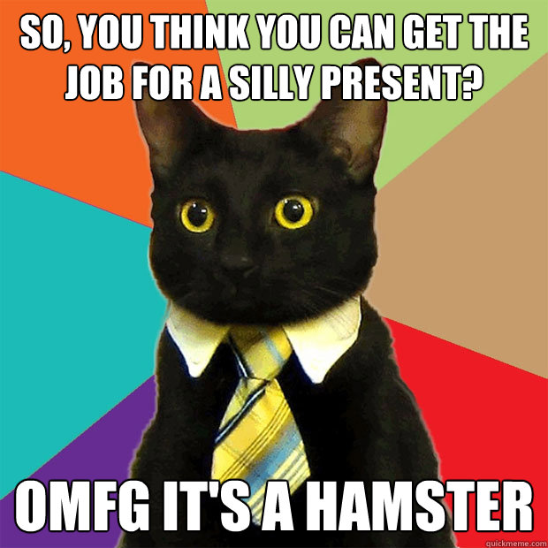 SO, YOU THINK YOU CAN GET THE JOB FOR A SILLY PRESENT? OMFG IT'S A HAMSTER - SO, YOU THINK YOU CAN GET THE JOB FOR A SILLY PRESENT? OMFG IT'S A HAMSTER  Business Cat