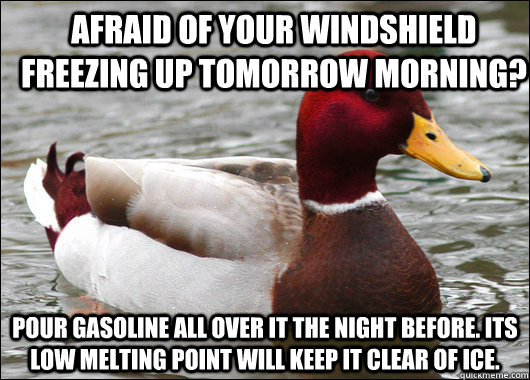 Afraid of your windshield freezing up tomorrow morning? Pour gasoline all over it the night before. Its low melting point will keep it clear of ice. - Afraid of your windshield freezing up tomorrow morning? Pour gasoline all over it the night before. Its low melting point will keep it clear of ice.  Malicious Advice Mallard