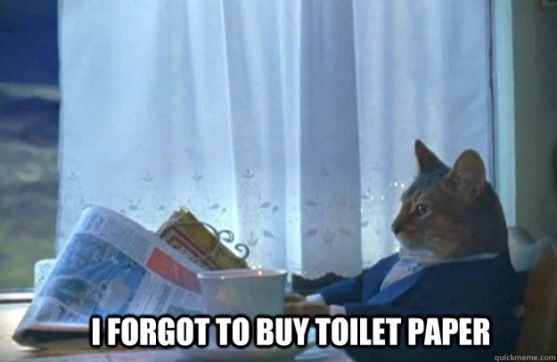 I forgot to buy toilet paper - I forgot to buy toilet paper  Sophisticated Cat