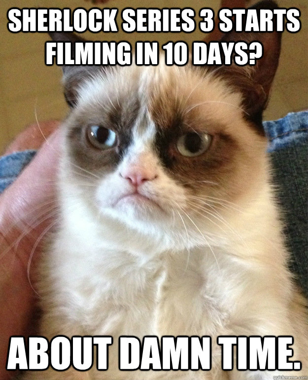 Sherlock Series 3 starts filming in 10 days? About damn time. - Sherlock Series 3 starts filming in 10 days? About damn time.  grumpycat