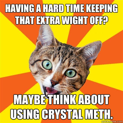having a hard time keeping that extra wight off? maybe think about using crystal meth.  Bad Advice Cat