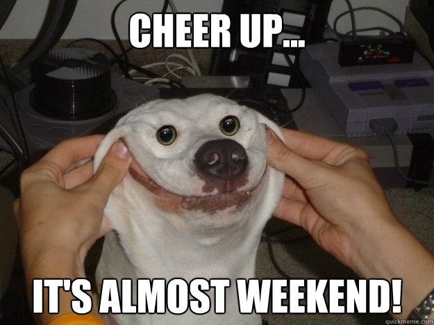 45d2c6b2558152c07d6d89d695ef1ad7528cce00a5ec21e3ea534ecf2a7fed3a cheer up it's almost weekend! forced happy dog quickmeme,Cheer Up Meme