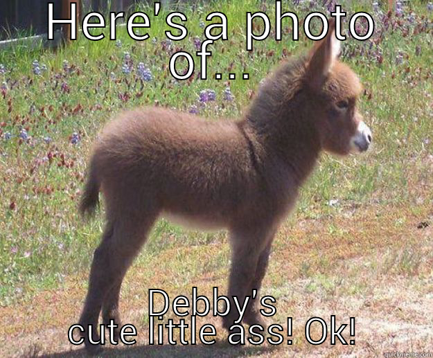 HERE'S A PHOTO OF... DEBBY'S CUTE LITTLE ASS! OK! in case you dont get any tonight