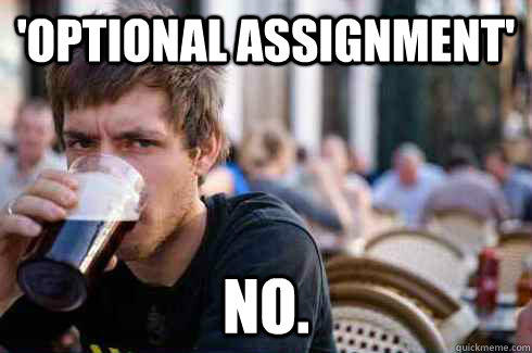 'Optional Assignment' No. - 'Optional Assignment' No.  Lazy College Senior