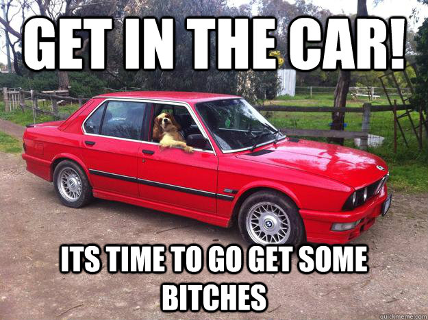GEt in the car! its time to go get some bitches - GEt in the car! its time to go get some bitches  Misc