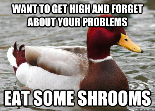 want to get high and forget about your problems eat some shrooms - want to get high and forget about your problems eat some shrooms  Malicious Advice Mallard