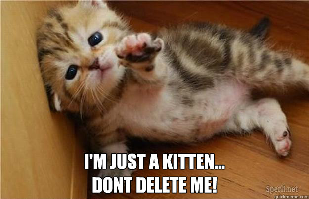 I'm just a kitten... dont delete me!