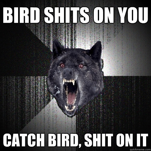 Bird shits on you Catch bird, shit on it - Bird shits on you Catch bird, shit on it  Insanity Wolf