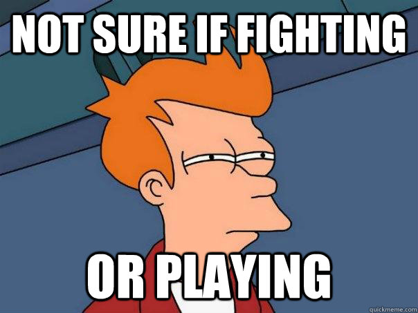 Not sure if fighting or playing - Not sure if fighting or playing  Futurama Fry