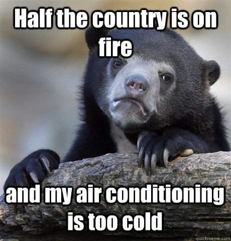 Half the country is on fire and my air conditioning is too cold - Half the country is on fire and my air conditioning is too cold  Confession Bear