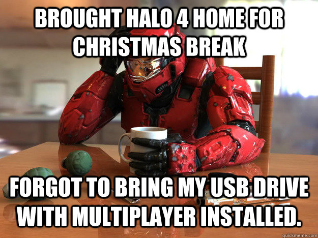 Brought Halo 4 home for Christmas Break Forgot to bring my usb drive with multiplayer installed.