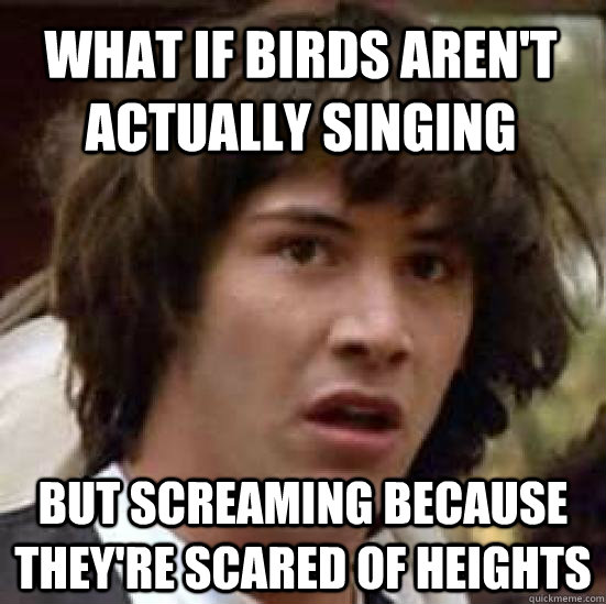 What if birds aren't actually singing But screaming because they're scared of heights - What if birds aren't actually singing But screaming because they're scared of heights  conspiracy keanu