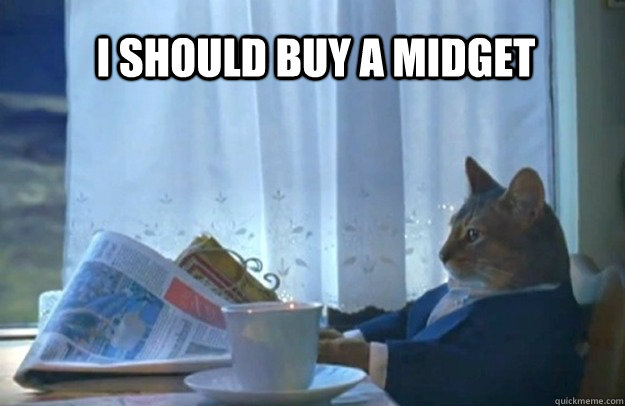 I should buy a midget - I should buy a midget  Sophisticated Cat