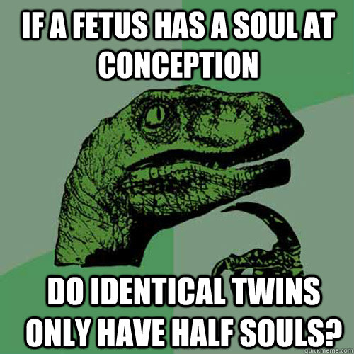 If a Fetus has a soul at conception Do identical twins only have half souls? - If a Fetus has a soul at conception Do identical twins only have half souls?  Misc
