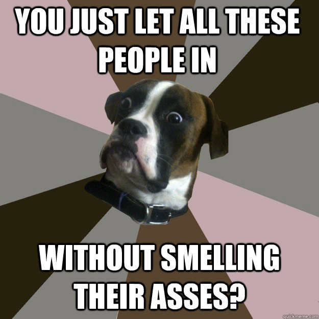 you just let all these people in without smelling their asses? - you just let all these people in without smelling their asses?  Genuinely Surprised Dog