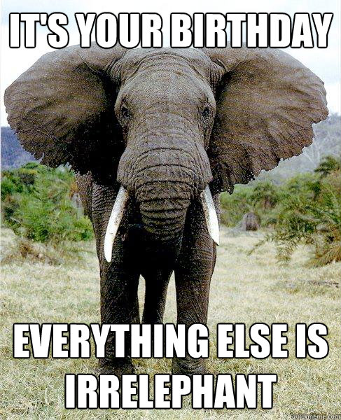 it's your birthday everything else is irrelephant