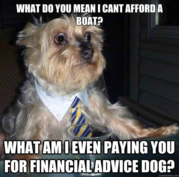 what do you mean i cant afford a boat? what am i even paying you for financial advice dog? - what do you mean i cant afford a boat? what am i even paying you for financial advice dog?  Misc