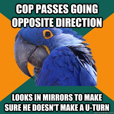 Cop passes going opposite direction Looks in mirrors to make sure he doesn't make a U-Turn - Cop passes going opposite direction Looks in mirrors to make sure he doesn't make a U-Turn  Paranoid Parrot