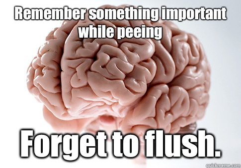 Remember something important while peeing Forget to flush. - Remember something important while peeing Forget to flush.  Scumbag Brain