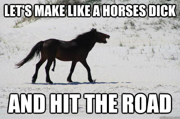 Let's make like a horses dick and hit the road - Let's make like a horses dick and hit the road  Misc