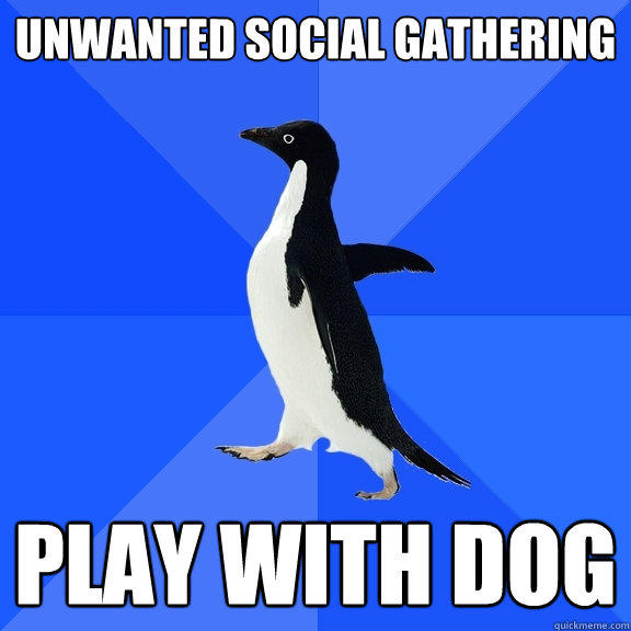 Unwanted Social gathering Play with dog - Unwanted Social gathering Play with dog  Socially Awkward Penguin