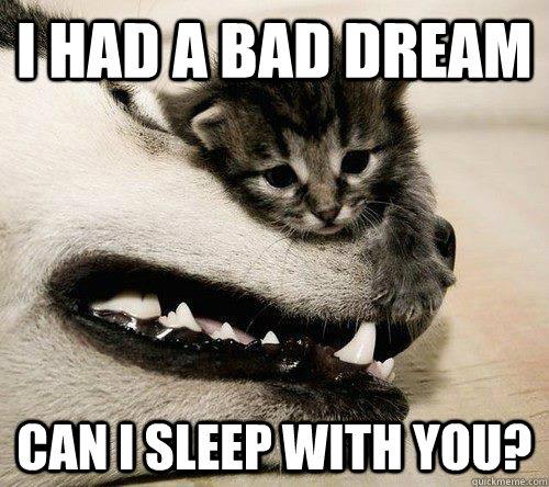 I had a bad dream can i sleep with you? - I had a bad dream can i sleep with you?  Sad meme is sad