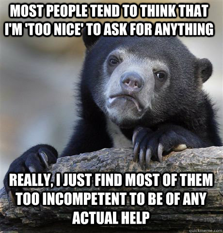 Most people tend to think that I'm 'too nice' to ask for anything Really, I just find most of them too incompetent to be of any actual help - Most people tend to think that I'm 'too nice' to ask for anything Really, I just find most of them too incompetent to be of any actual help  Confession Bear