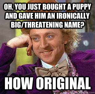 Oh, you just bought a puppy and gave him an ironically big/threatening name? how original  Condescending Wonka