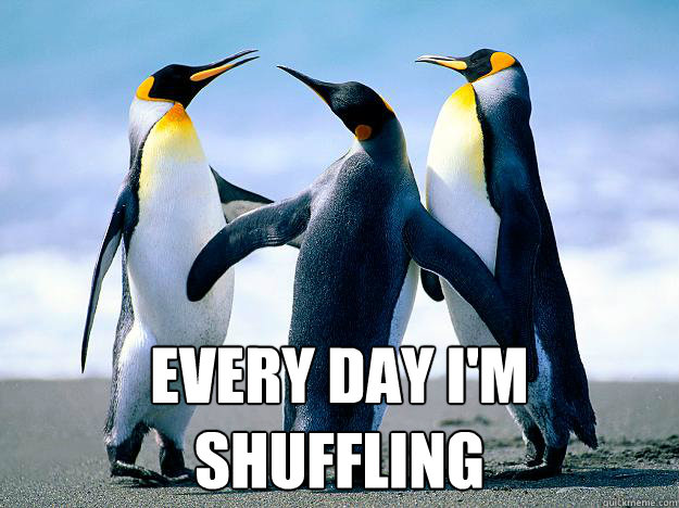 Every Day I'm Shuffling -  Every Day I'm Shuffling  Penguin Meeting
