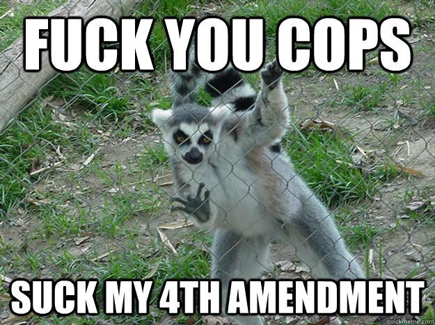 Fuck you cops suck my 4th amendment  Libertarian Lemur