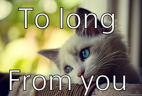 TO LONG FROM YOU First World Problems Cat