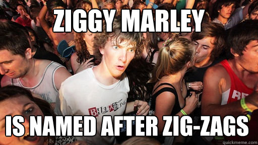 Ziggy Marley is named after zig-zags - Ziggy Marley is named after zig-zags  Sudden Clarity Clarence