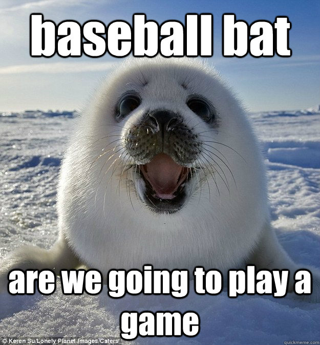 Baseball Bat Are We Going To Play A
