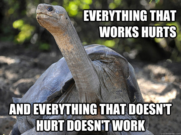 Everything that works hurts and everything that doesn't hurt doesn't work  Old Age Problem Turtle