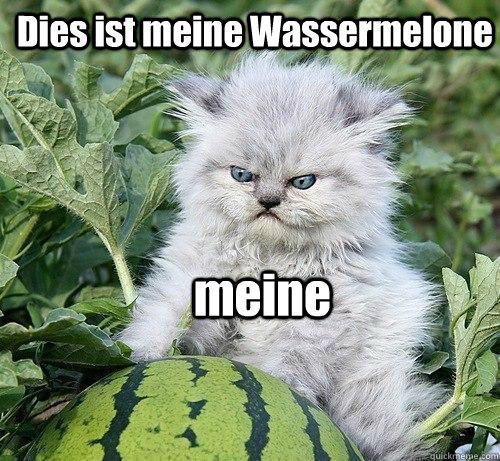 Dies ist meine Wassermelone  meine   German Kitty