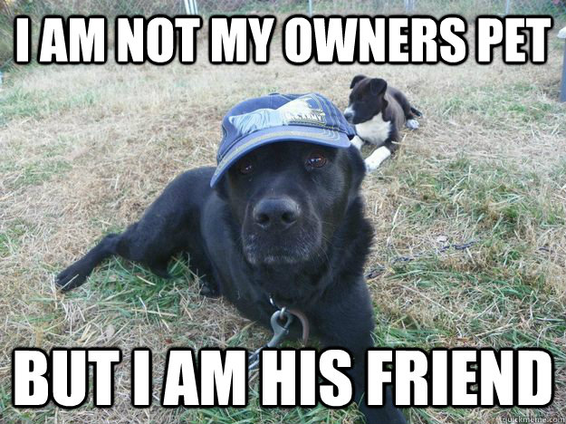 i am not my owners pet but i am his friend