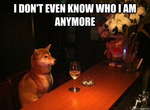 I don't even know who i am anymore  - I don't even know who i am anymore   Hindsight Hound