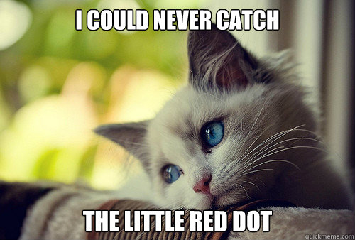 I could never catch the little red dot - I could never catch the little red dot  First World Cat Problems