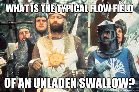 478b50352d1c7fcd0ed609d24653a8e996f5fa015cfebe1017767a2e9451b1b6 what is the typical flow field of an unladen swallow? monty