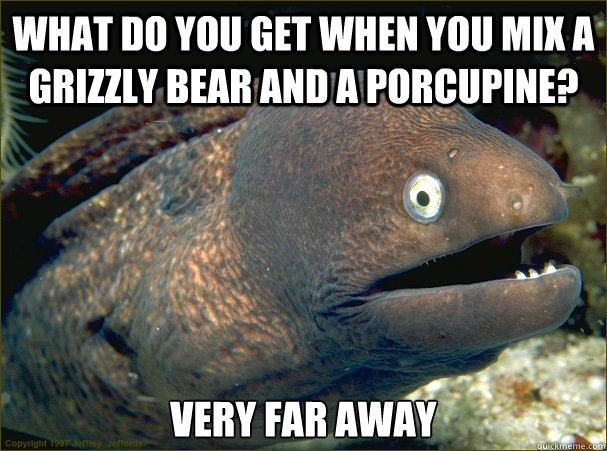What do you get when you mix a grizzly bear and a porcupine?  Very far away  - What do you get when you mix a grizzly bear and a porcupine?  Very far away   Bad Joke Eel