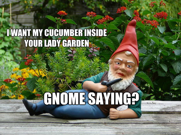 I want my cucumber Inside your lady Garden Gnome saying?  Sexy Gnome