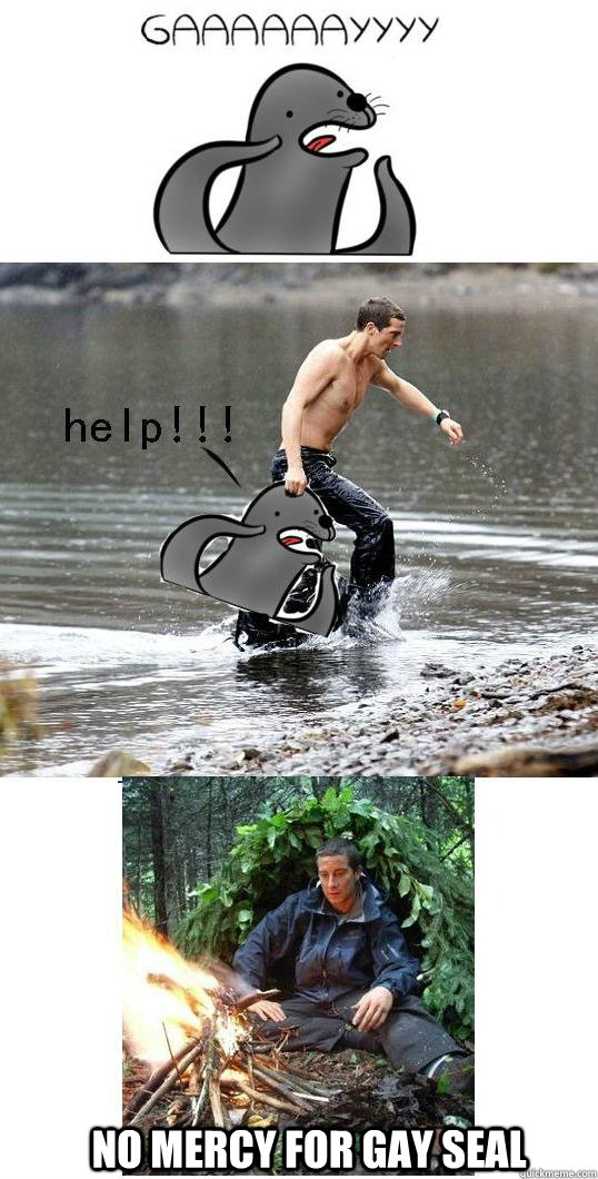 No mercy for gay seal - No mercy for gay seal  just bear grylls.