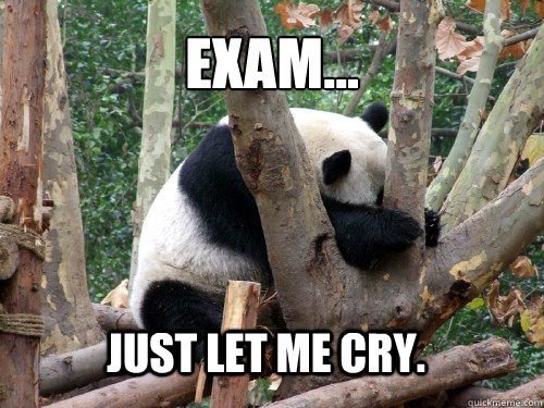 Exam... Just let me cry.