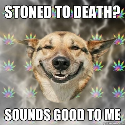 Stoned to death? Sounds good to me - Stoned to death? Sounds good to me  Stoner Dog