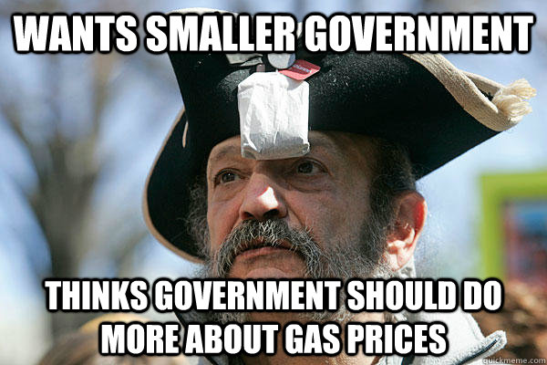 WANTS SMALLER GOVERNMENT THINKS GOVERNMENT SHOULD DO MORE ABOUT GAS PRICES