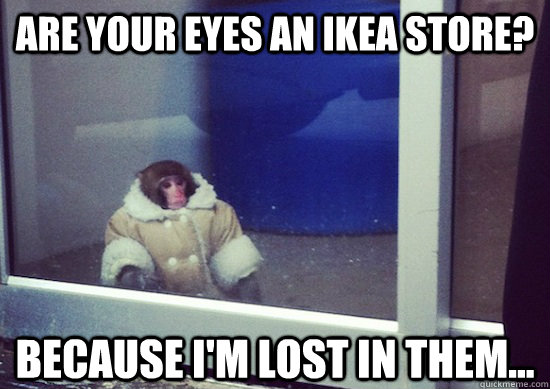 Are your eyes an ikea store? Because I'm lost in them...