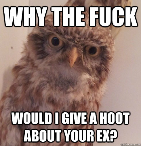 Why the fuck would I give a hoot about your ex?